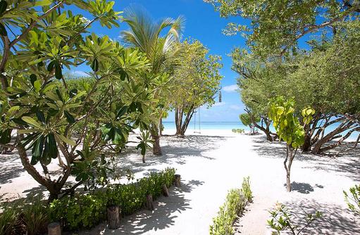 Kräutergarten, frische Küche, natürliche Zutaten I LUX South Ari Atoll