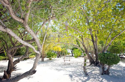 Schaukeln und die Seele baumeln lassen, Glücklich sein, Grüner Garten I LUX South Ari Atoll