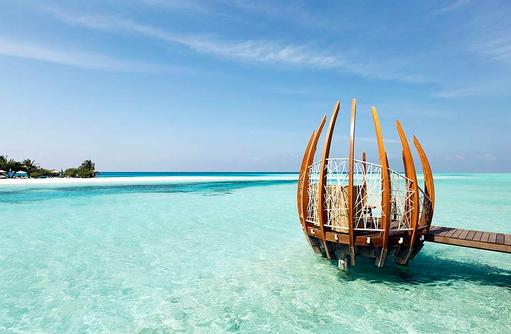 East Market Dining, gemütliches Nest über dem Meer I LUX South Ari Atoll