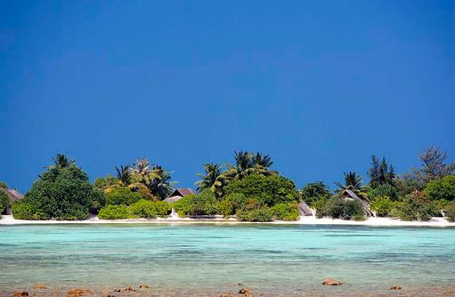 Beach Pavillions, versteckt hinter Palmen, Privatsphäre I LUX South Ari Atoll