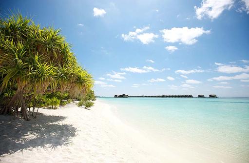 puderweisser Traumstrand, Wasservillen am Horizont I LUX South Ari Atoll