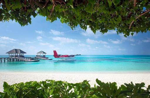 Blick durchs Grün auf den Ankunftssteg mit Wasserflugzeug I LUX South Ari Atoll