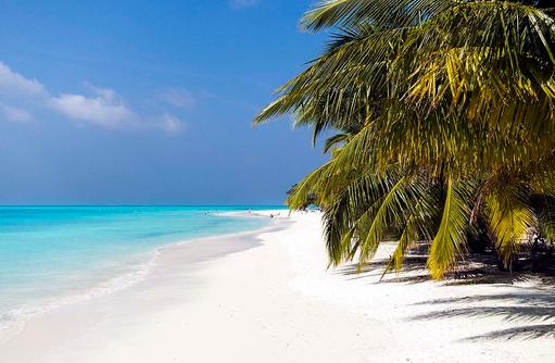 türkisblaues Meer, weißer Sandstrand, Meeru Island Resort