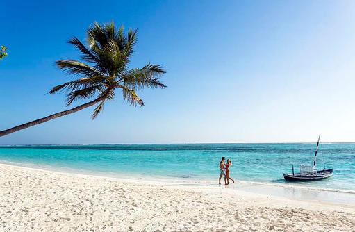 Kokospalme, Zeit zu Zweit, Traditionelles Dhoni, Meeru Island Resort