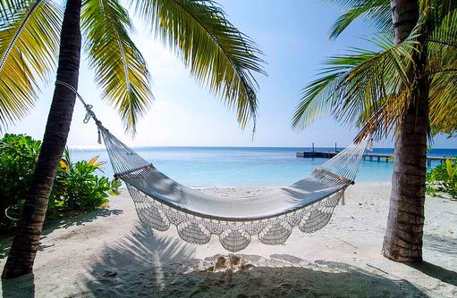 Hängematte zwischen Palmen, Mirihi Island Resort, Malediven