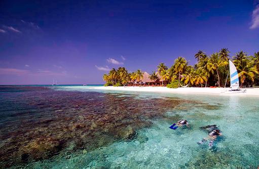 Wassersport, Tauchen am Hausriff, Mirihi Island Resort, Malediven
