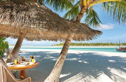 Frühstück unter Palmen, Naladhu Private Island Maldives