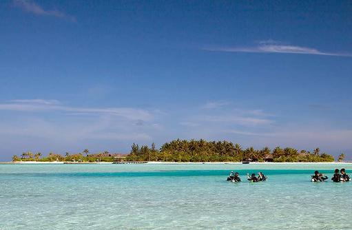Taucher am Strand, Naladhu Private Island Maldives