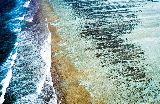 Riff, Niyama Private Islands Maldives