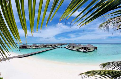 Blick aus den Palmen auf Wasservillen, Paradise Island Resort & Spa, Maldives