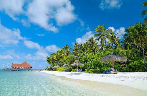 Strand mit Palmen und Liegestühlen I ROBINSON Club Maldives
