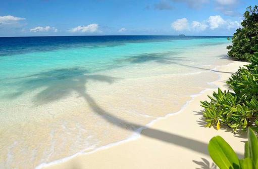 türkisblauer Indischer Ozean I ROBINSON Club Maldives
