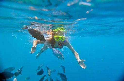 Schnorcheln, Unterwasserbild, Fischbeobachtung, Royal Island Resort & Spa, Maldives