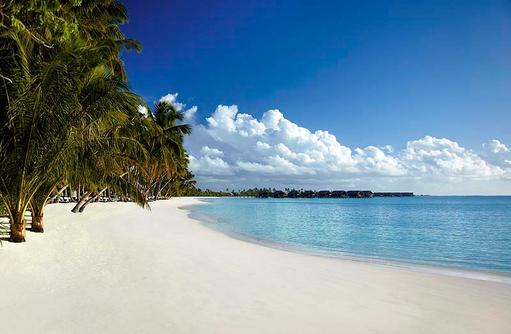Weißer Traumstrand mit Palmen, Shangri-La's Villingili Resort & Spa, Malediven