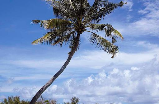 Einziger 9-Loch Golfplatz der Malediven, Shangri-La's Villingili Resort & Spa, Malediven