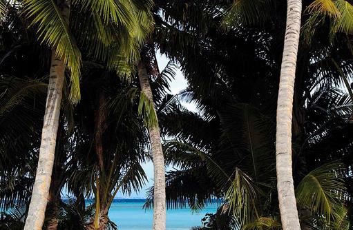Hängematte unter Palmen, Shangri-La's Villingili Resort & Spa, Malediven