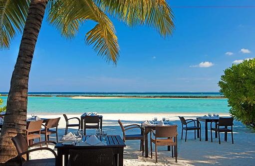 Sea Salt Restaurant, Seafood, Fisch Restaurant, Sheraton Full Moon Resort & SPA, Malediven