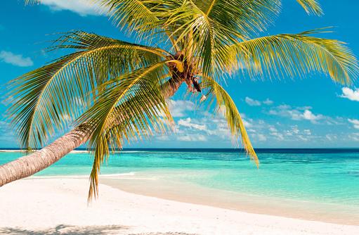 Strand, Strand, South Palm Resort Maldives