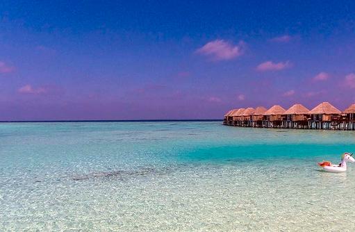 Meer, Einhorn, Reef, Villas,Sun Aqua Vilu Reef Maldives