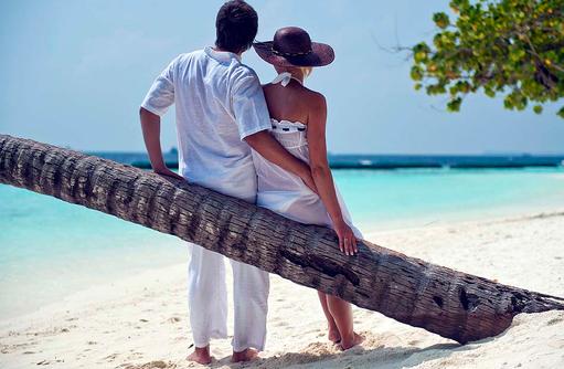 Palme, Fotomotiv, Romantik, Sun Aqua Vilu Reef Maldives