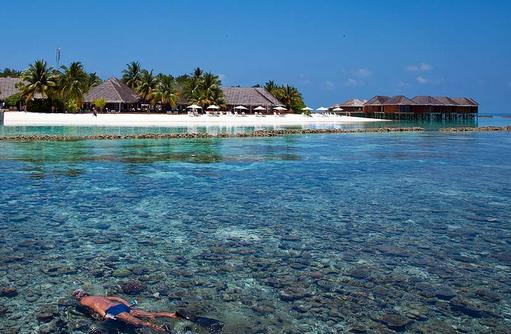 Schnorcheln am Hausriff, Vakarufalhi Island Resort, Maldives