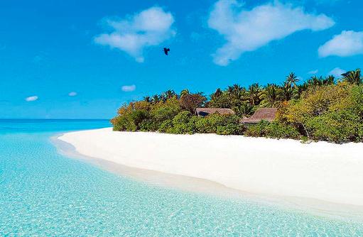 Strand mit Palmen, Vakkaru, Maledives