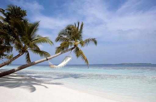 Hängematte an der Palme am Strand, Vilamendhoo Island Resort, Maldives
