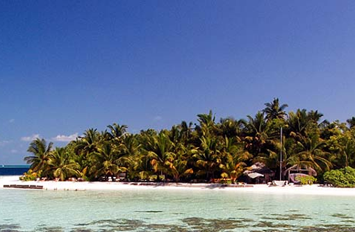 Palmenbewachsene Insel, Vilamendhoo Island Resort, Maldives