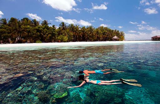 Schnorcheln, Vilamendhoo Island Resort, Maldives