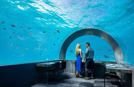 H2O Unterwasser Restaurant, You & Me by Cocoon