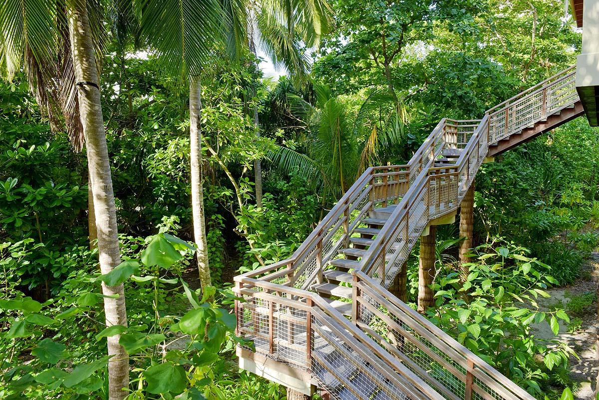 Treppenaufgang zum Tree House