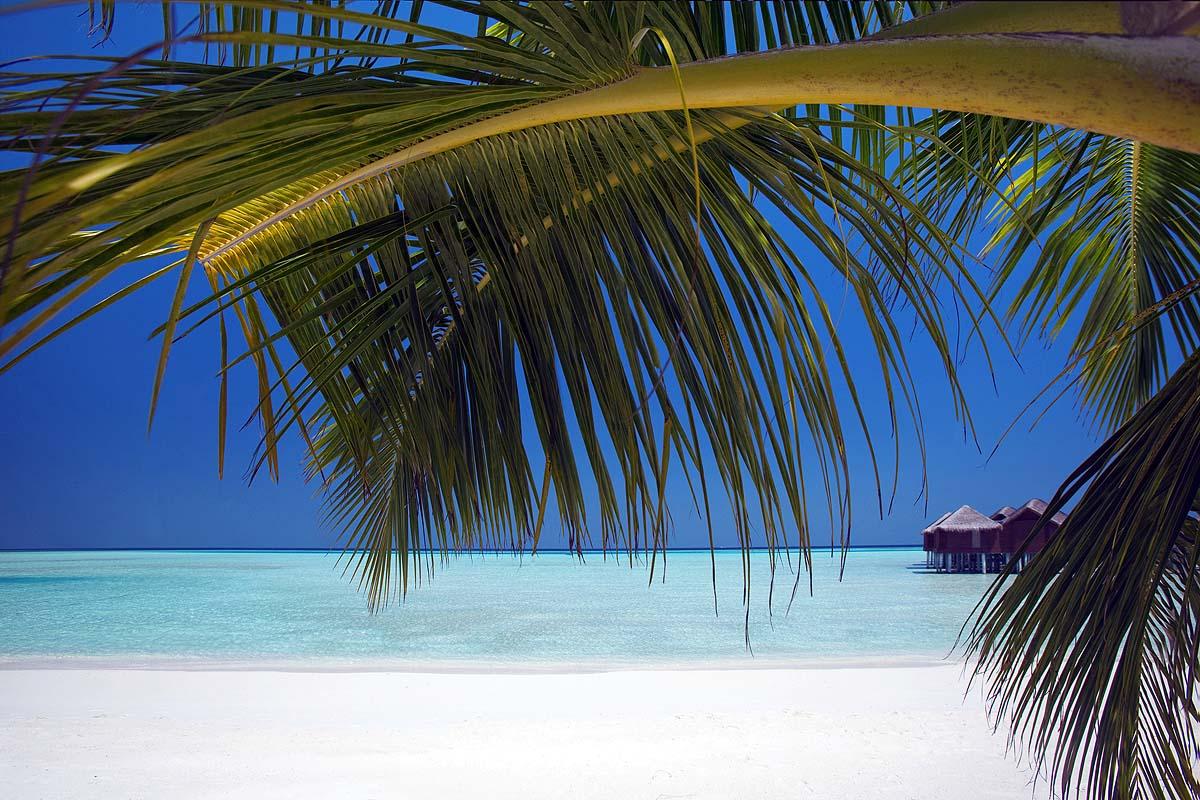 Blick auf die Wasser Villen, Anantara Dhigu, Maledives
