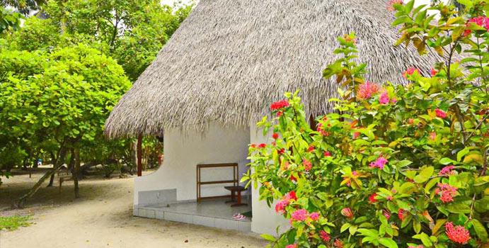 Classic Room, Fihalhohi Island Resort
