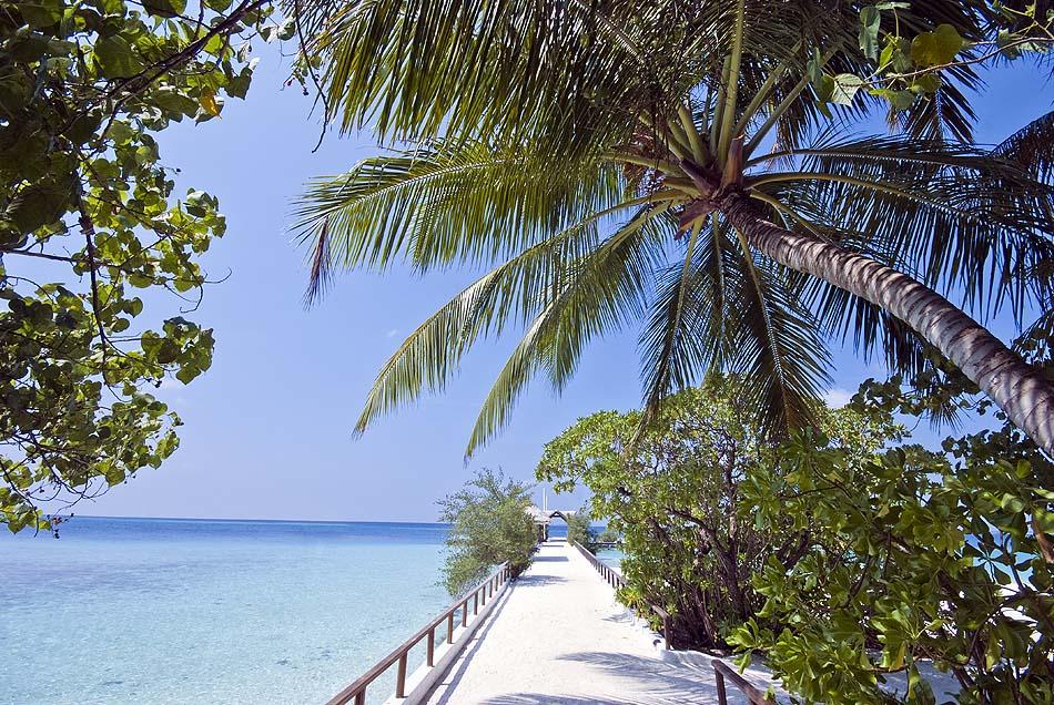 Ankunftsteg I Makunudu Island Resort