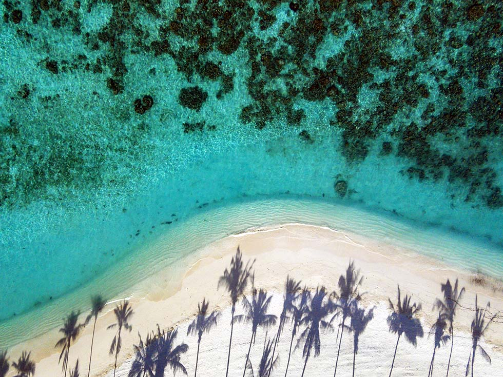 Sandstrand, Palmen, Riff, Milaidhoo Island, Maledives