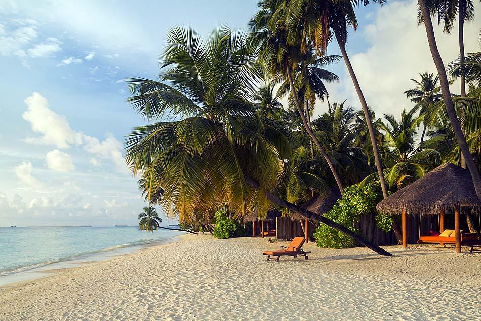 Palmenstrand, Sun Aqua Vilu Reef Maldives