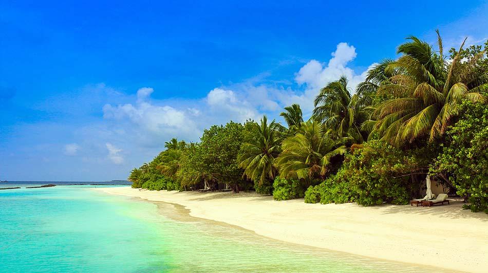 Strand mit Palmen, Vakarufalhi Island Resort, Maldives